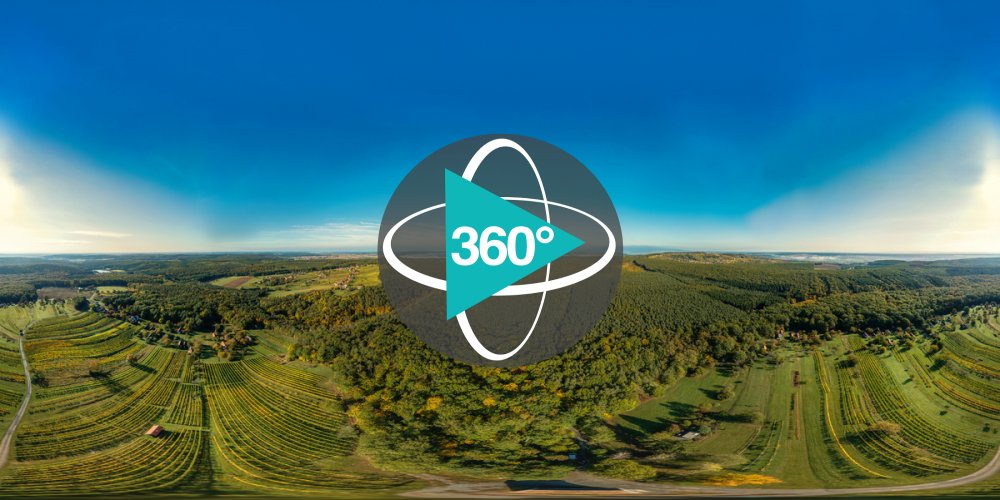 Play '360° - Weinidylle Burgenland