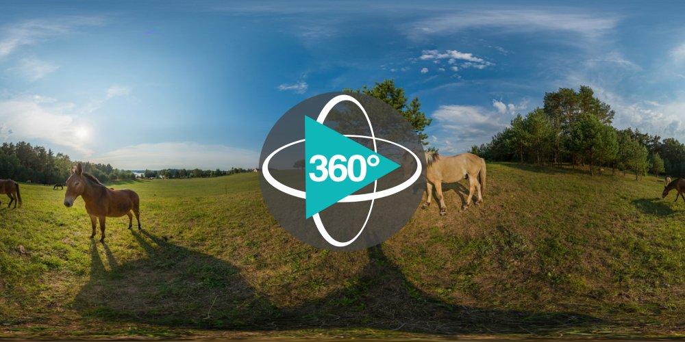 Play '360° - Landwirtschaft